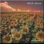 sunflower  (試聴※3.ダイヤモンド 5.廻り続ける世界)